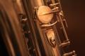 Saxophone -Support pouce droit David Barrault